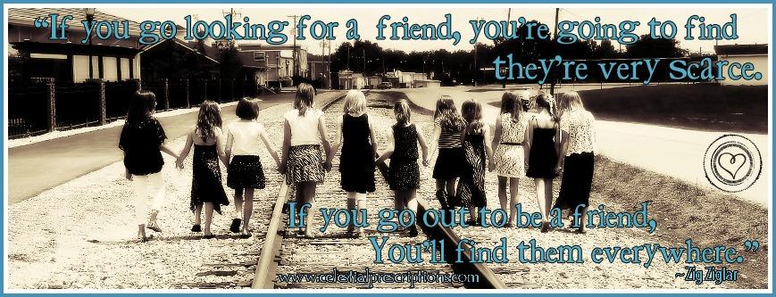 friendstimeline3 copy